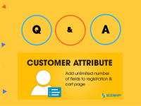 Customer Attribute