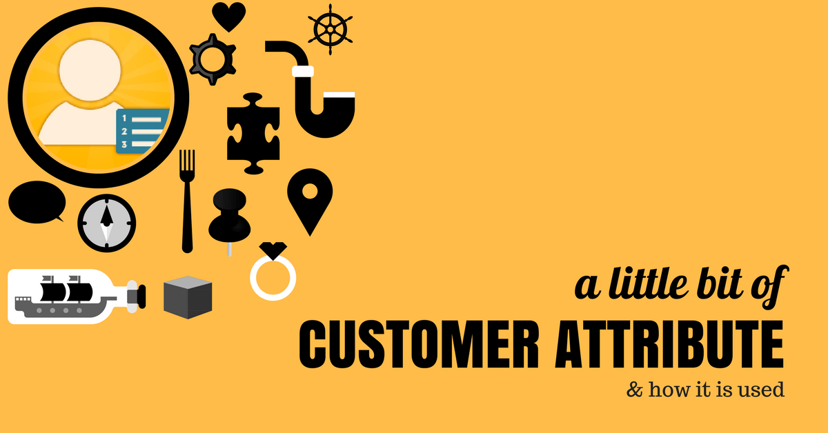Sample of Customer attribute